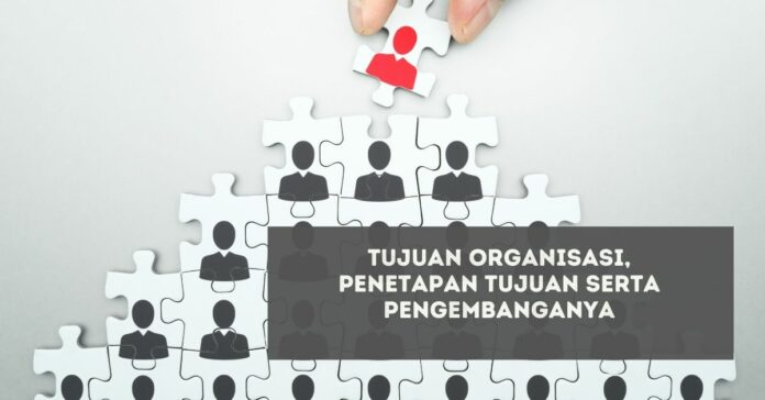 Tujuan Organisasi, Penetapan Tujuan Serta Pengembangannya